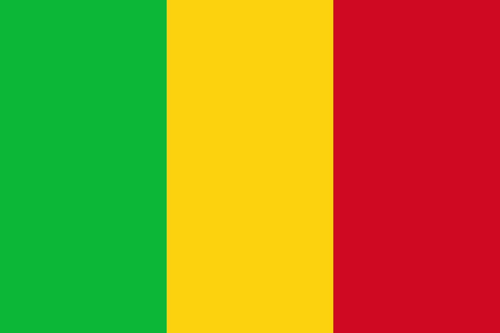 Que se passe-t-il au Mali ? Entretien avec Olivier DOSSOU